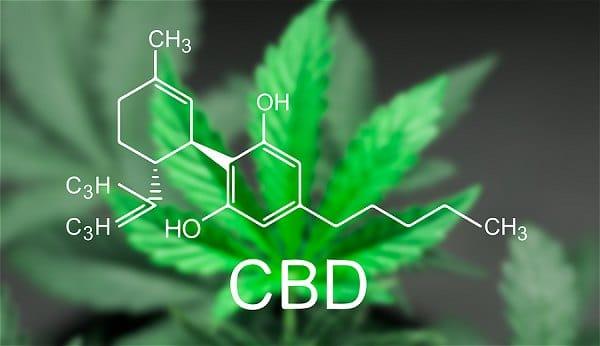 CBD Oil A Cure for Depression