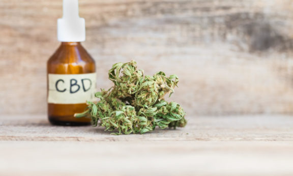 Life Expectancy of CBD Oil