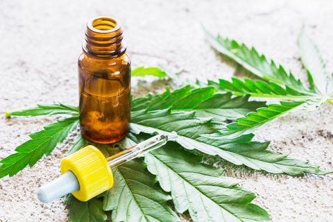 cbd oil and its disadvantage
