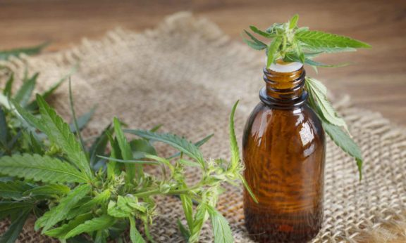 A Practical Overview Of CBD Tinctures And Its Uses