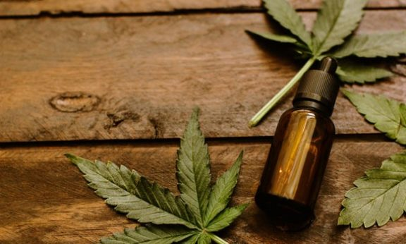 CBD Oil And Hemp Oil Know The Difference