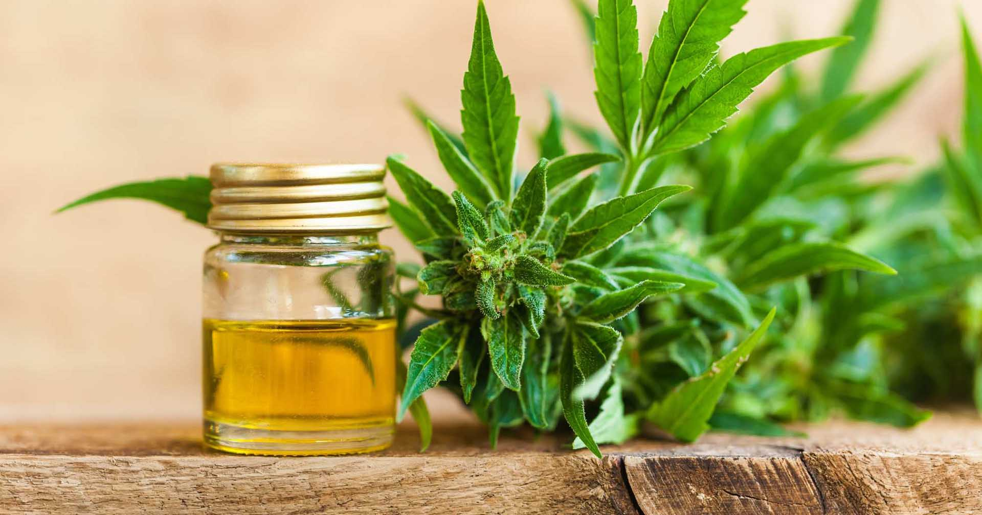 Is CBD Oil a cure for your sleeplessness