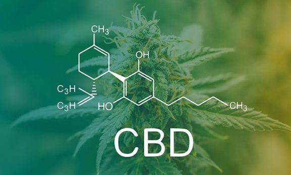 5 Facts You May Not Know About CBD