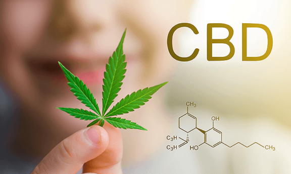 Can CBD Promote Endocrine Balance