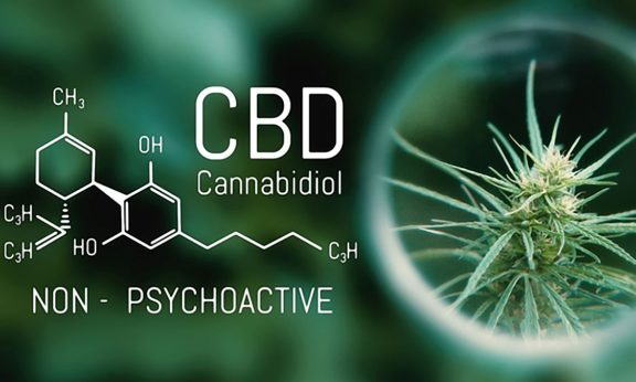 Potential-Benefits-Of-CBD-Against-Autoimmune-Disease