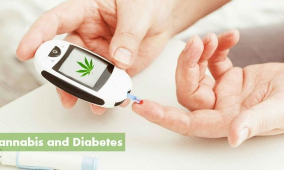 CannabisAndDiabetes